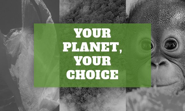Your Planet, Your Choice