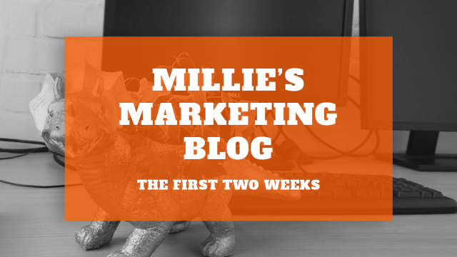 Millie's Marketing Blog – The First Two Weeks