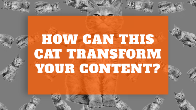Want buckets of great content even during lockdown? Here's how: