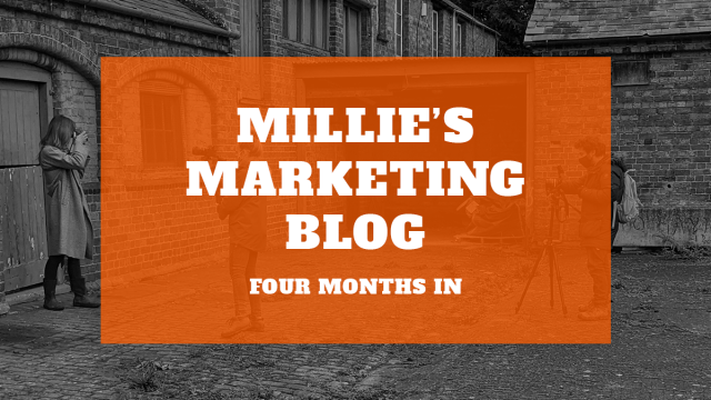 Millie's Marketing Blog – Four Months In