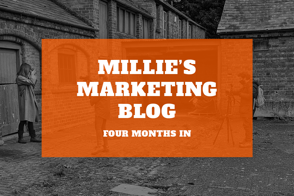 Millie's Marketing Blog – Four Months In