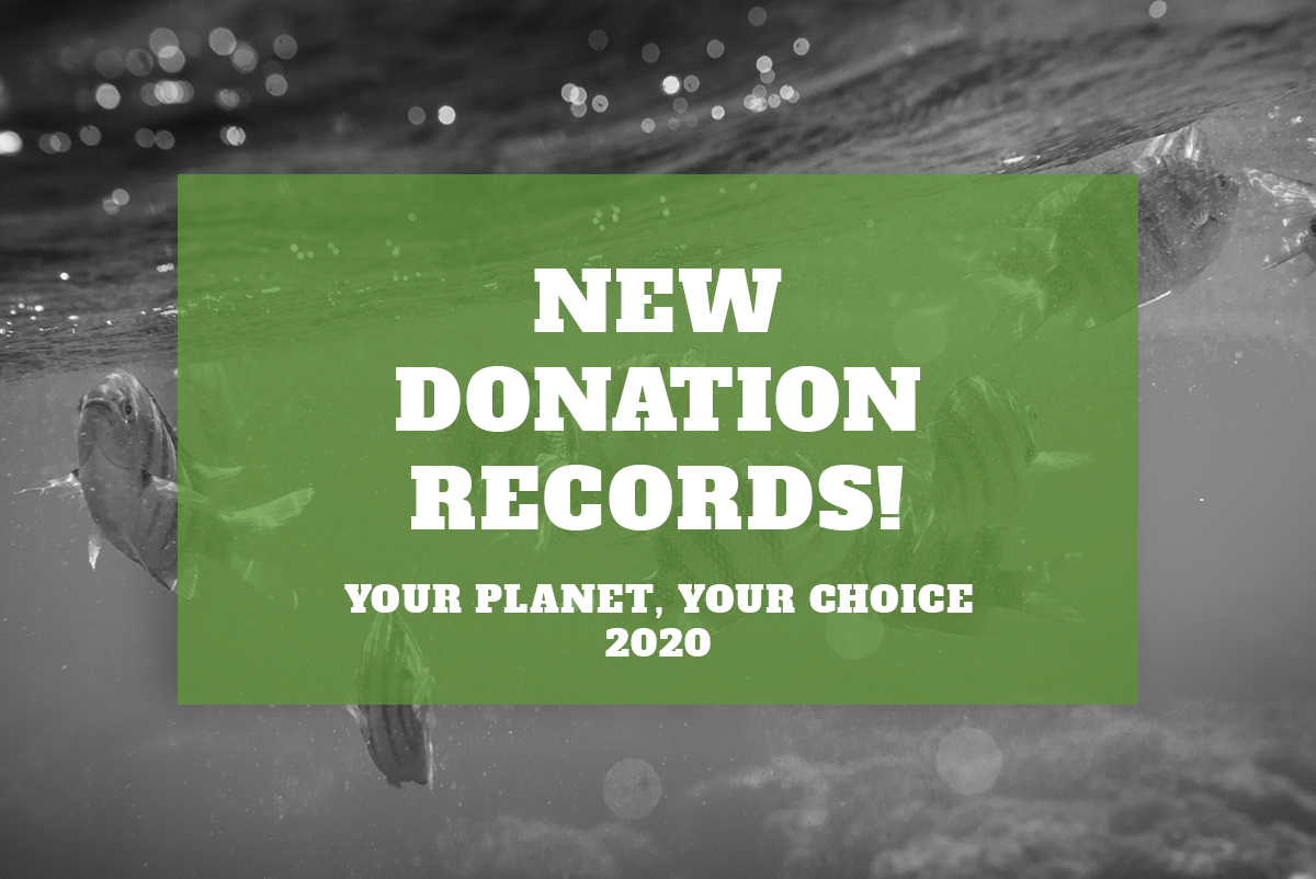 New Donation Records – Your Planet Your Choice 2020 Wrap Up