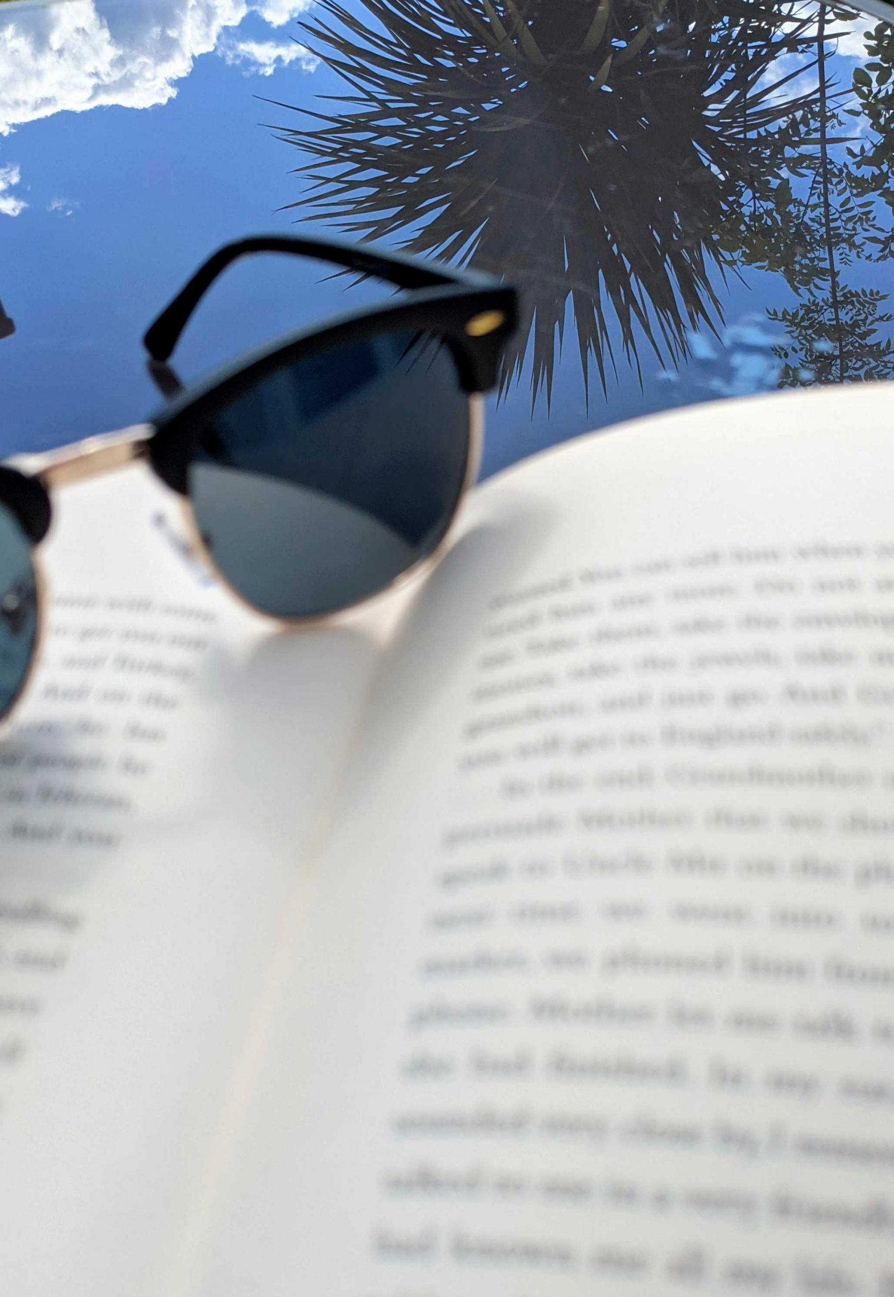 Amelia's submission to the Great British Photography Challenge shows a close up of the top of a book with sunglasses laid on top, and a blue sky and trees in the background.